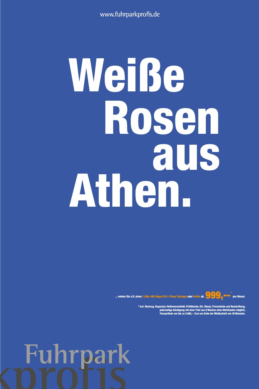 weiße Rosen aus Athen Anzeigen Kampagne
